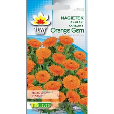 Marigold-dwarf Orange gem