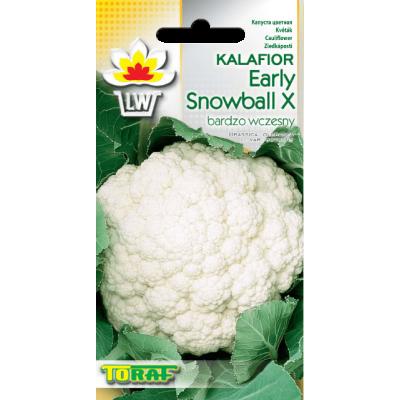 Cauliflower Early Snowball X