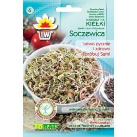 Sprout seeds lentils