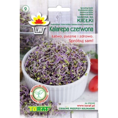 Sprout seeds purple hohlrabi