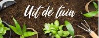 Tanie zdrowe suszone owoce, warzywa i płatki | ietsGezond.nl