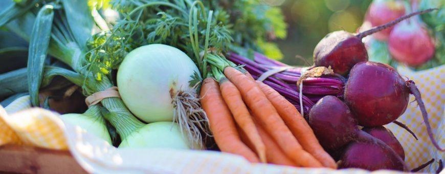 Gedroogde groenten